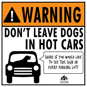 Dont_Leave_Dogs_in_Cars